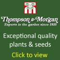 Thompson-morgan.com/tsop434